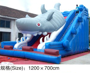 Kids Inflatable